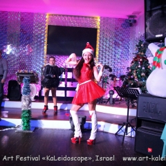 28.12.2016 Performance for volunteers Happy New Year (102)